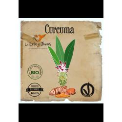 CURCUMA dyestuff, acne, antirrudh, antioxidant
